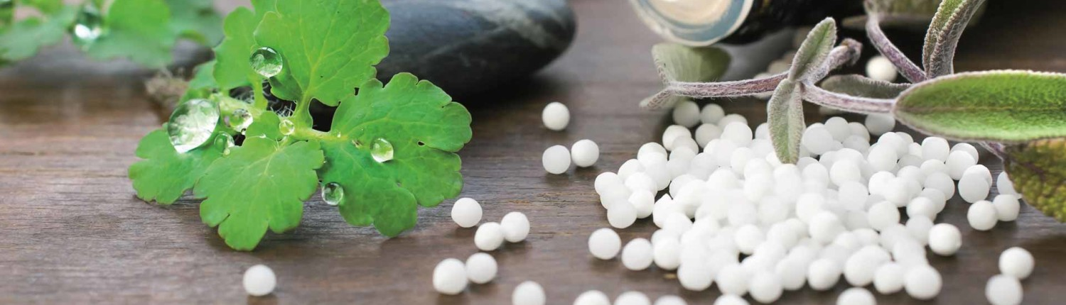 Homeopathy in Haldwani